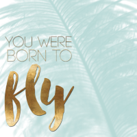 Born_to_Fly